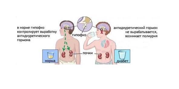 эндокринолог мариуполь